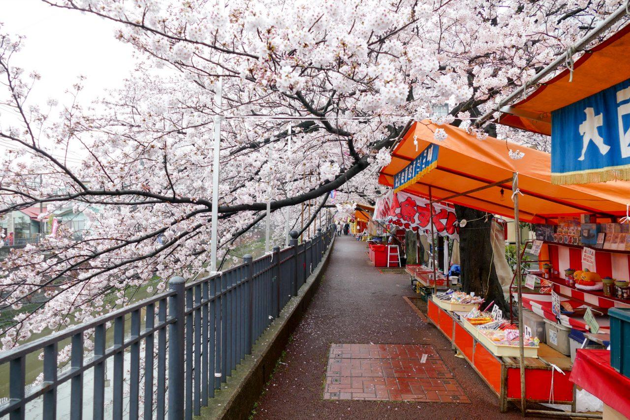 大岡川の桜と屋台