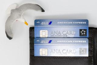 ANAアメリカン・エキスプレス・カードの家族カード