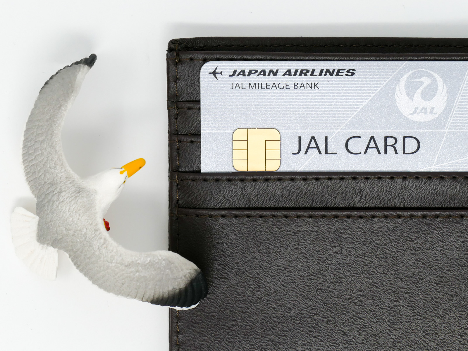 JAL普通カードJCB