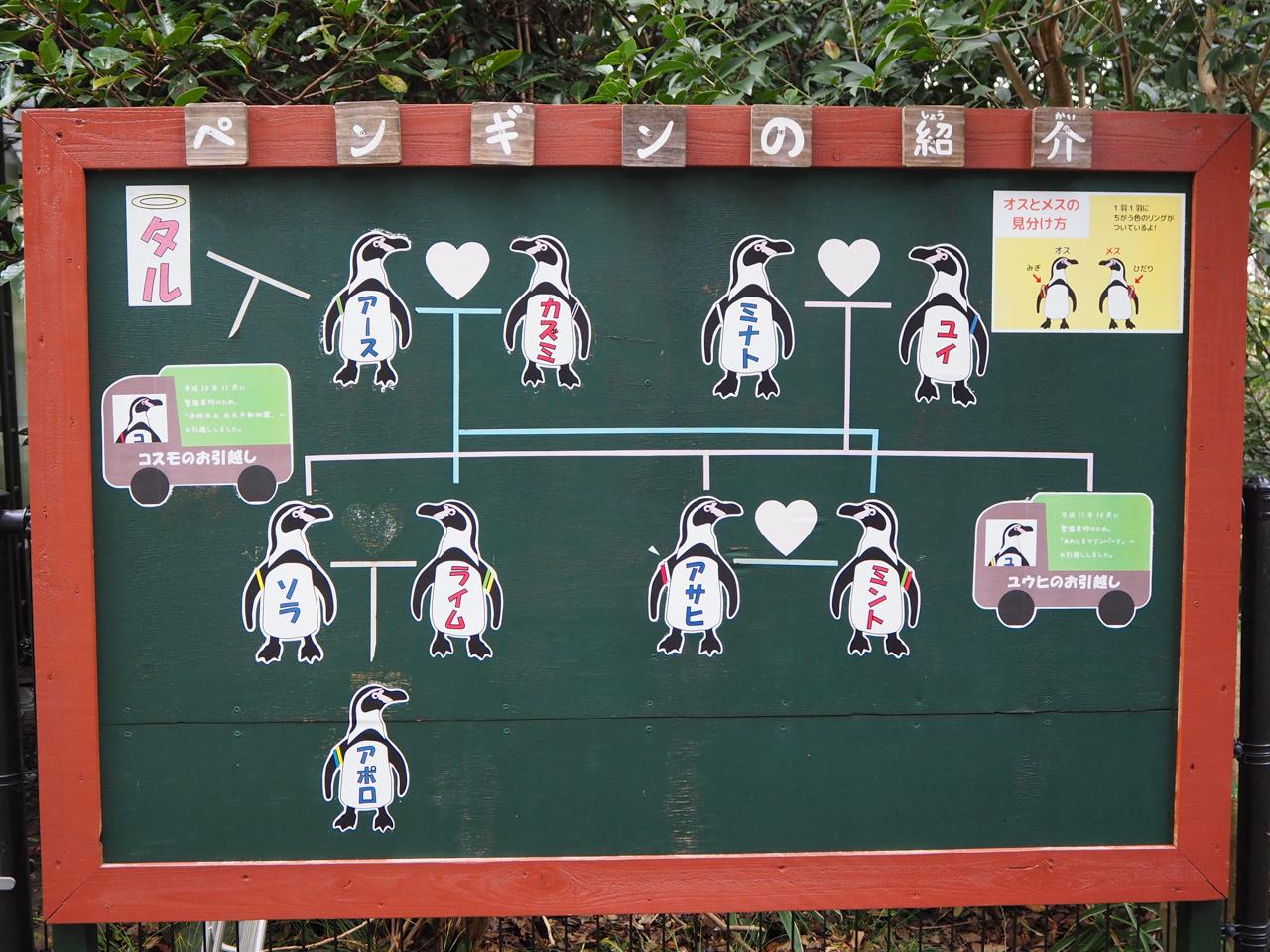 野毛山動物園の説明書き